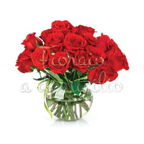 18_rose_rosse