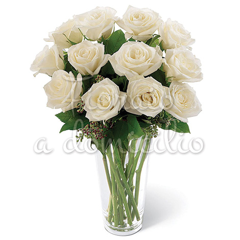 12_rose_bianche