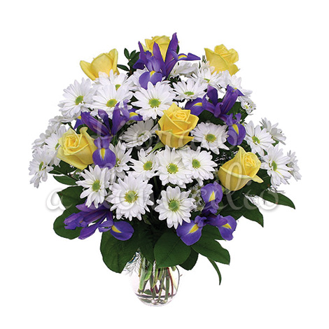 bouquet_margherite_bianche_iris_roselline_gialle