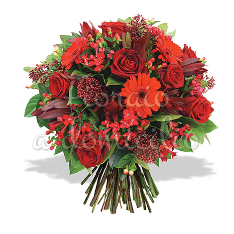 bouquet_rose_gerbere_rosse