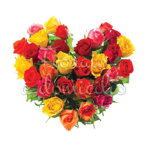 cuore_di_rose_di_colori_misti